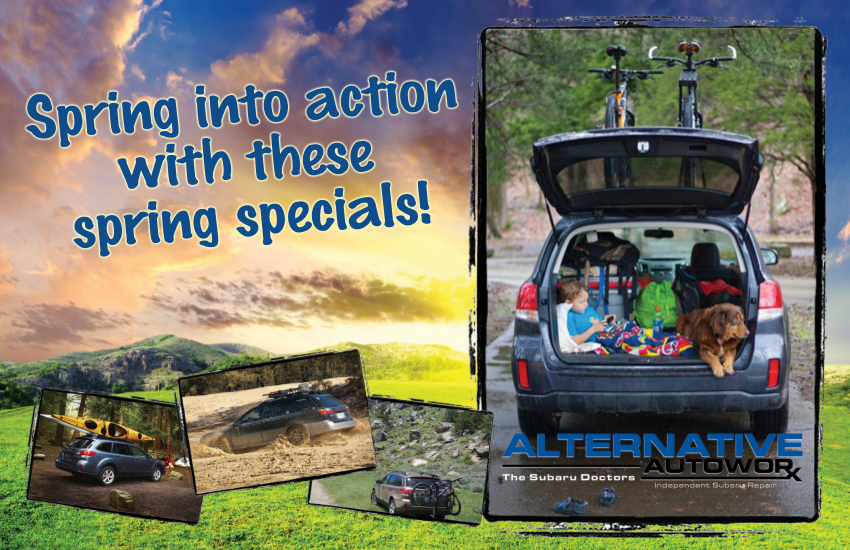 Spring into action with these spring specials!